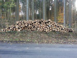 Brennholzverkauf Fbg Dh